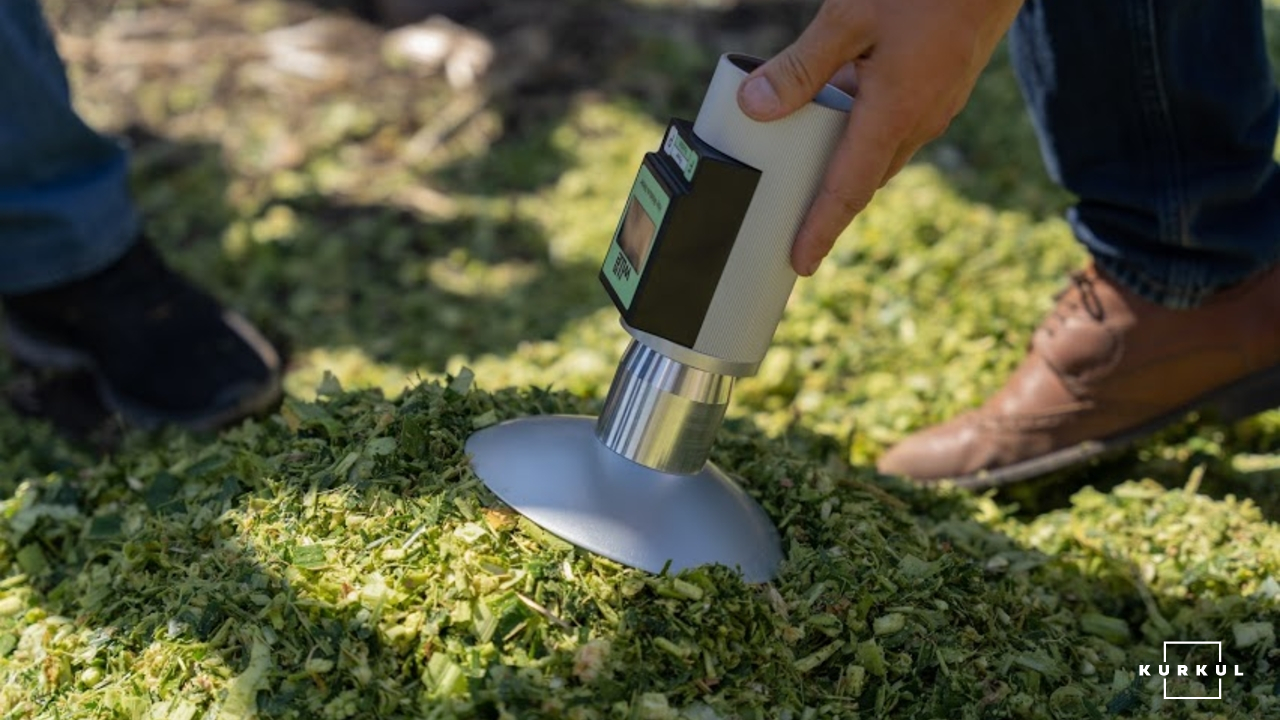 Кукурудза на силос — технологія вирощування та аспекти силосування фото 9 LNZ Group