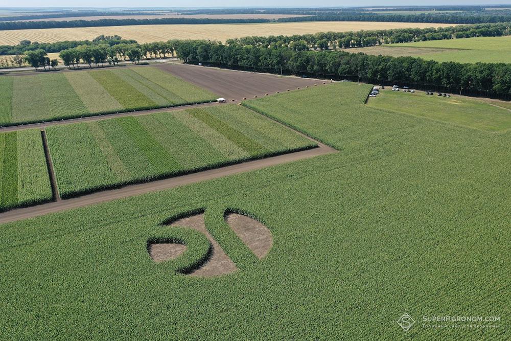 Випробування гібридів кукурудзи, соняшнику, та технологій вирощування культур на Черкащині: що побачили аграрії фото 5 LNZ Group