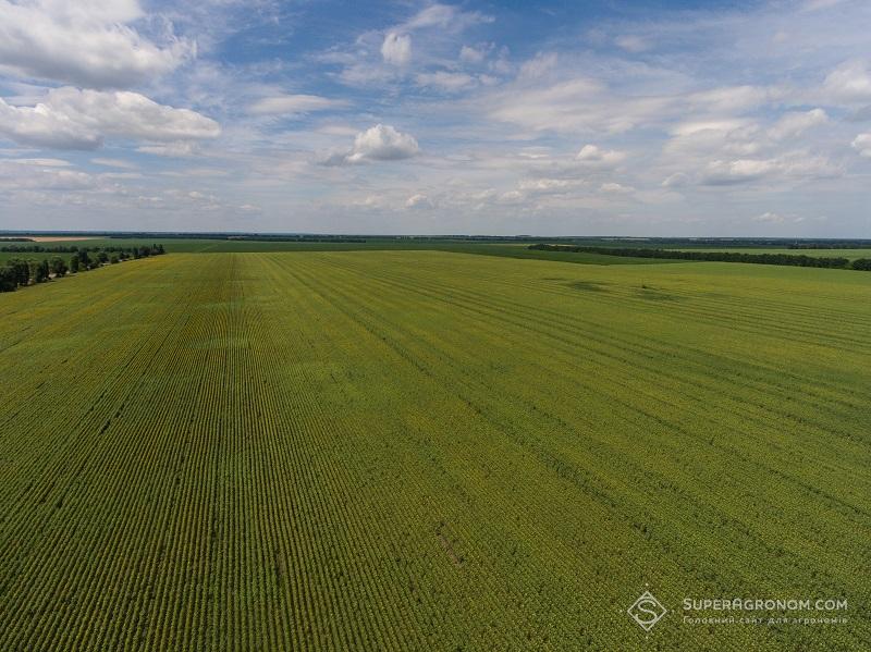 Внесення ЗЗР дронами: особливості застосування та екологічний аспект фото 3 LNZ Group
