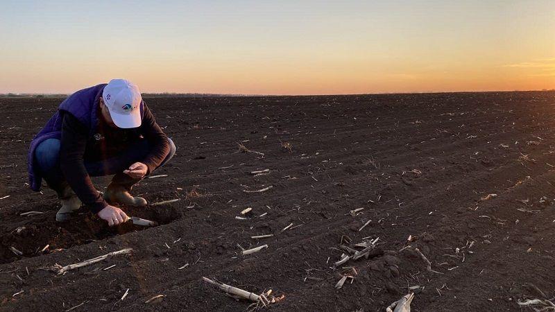 Віталій Брашован: Азотне підживлення озимих, тенденції щодо ФАО кукурудзи та чи буде дефіцит насіннєвого матеріалу у 2021 році фото 1 LNZ Group