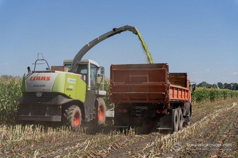 Леонід Чорний: Розумні підходи у вирощуванні соняшнику та кукурудзи в Центральному регіоні фото 2 LNZ Group