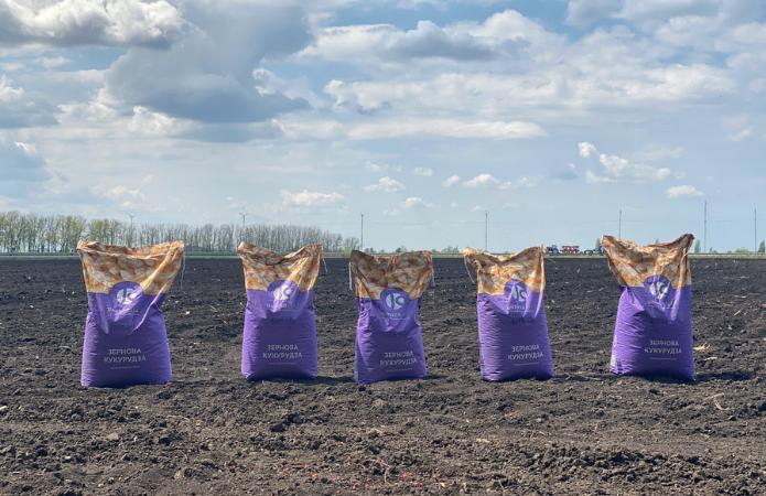 Технологія вирощування кукурудзи залежно від ґрунтово-кліматичних умов фото 4 LNZ Group