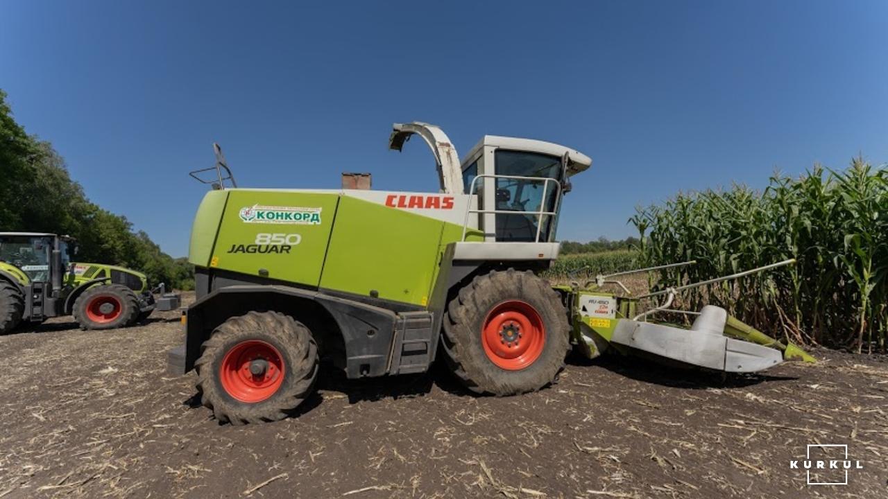 Кукурудза на силос — технологія вирощування та аспекти силосування фото 8 LNZ Group
