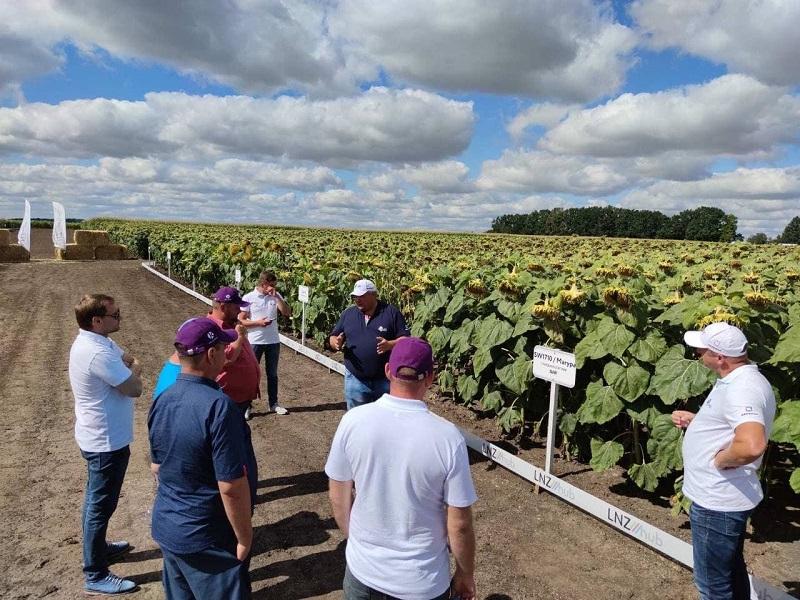 Олександр Котигора: Вплив строків та норм висіву на урожайність соняшнику фото 3 LNZ Group