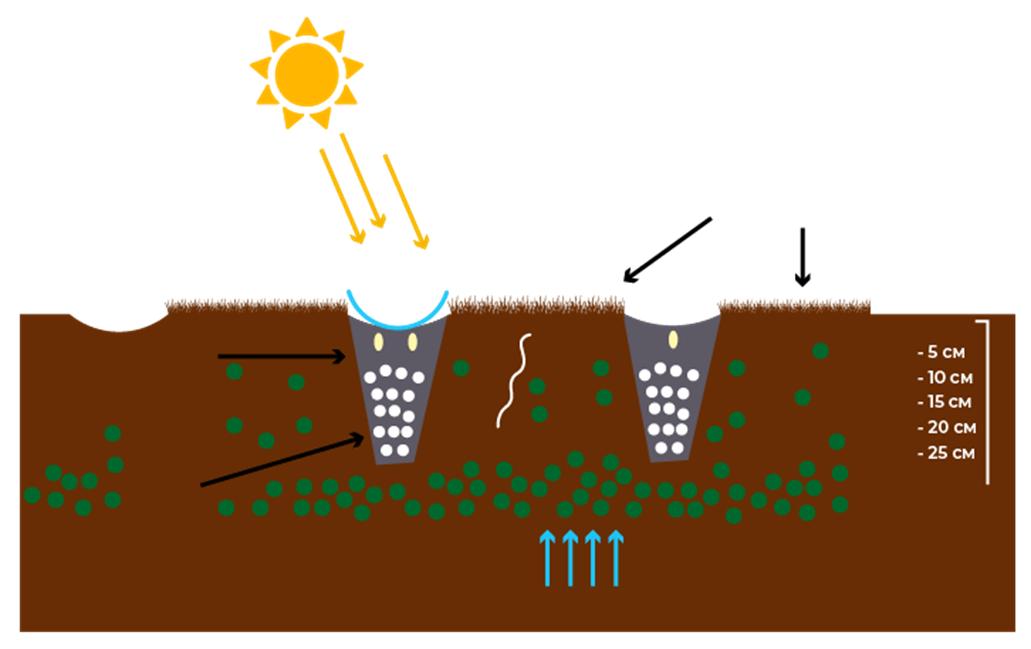 Обробіток ґрунту. Основні завдання для вирішення в умовах змін клімату фото 7 LNZ Group