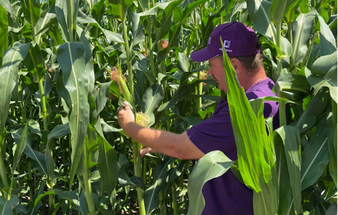 Стати радником для аграрія: Як бути ефективним в умовах зміни клімату та подорожчання ресурсів фото 3 LNZ Group