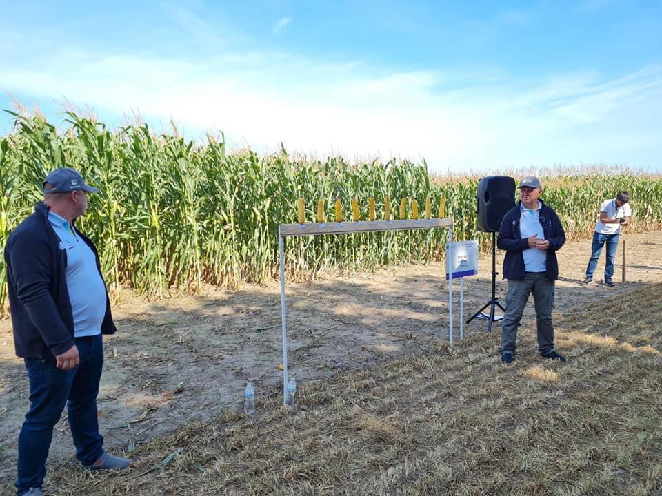На Digital Field-2021 визначили найврожайніші гібриди кукурудзи фото 1 LNZ Group