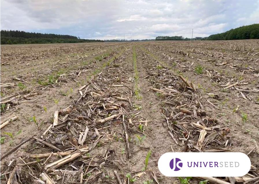 Вартість системи захисту кукурудзи за Strip-till складає на 1 га фото 1 LNZ Group